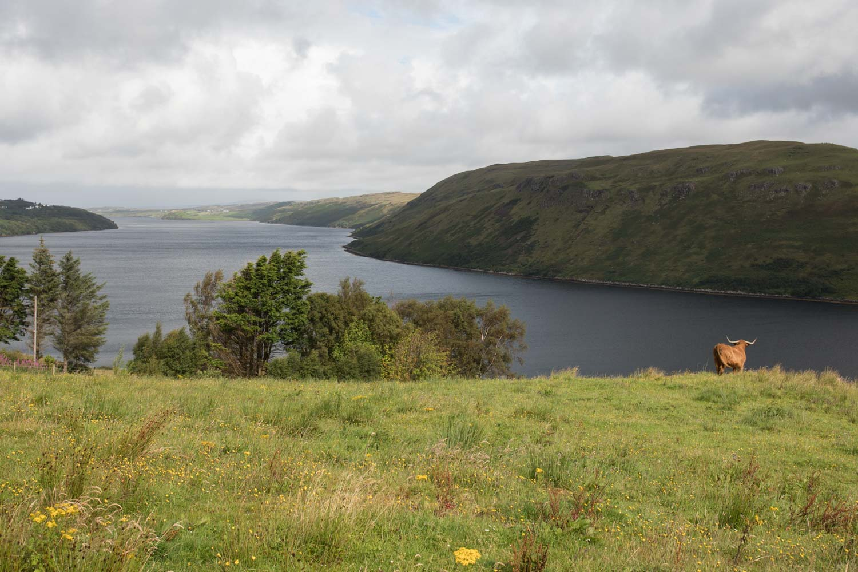 szkocja namiot, Isle of Skye
