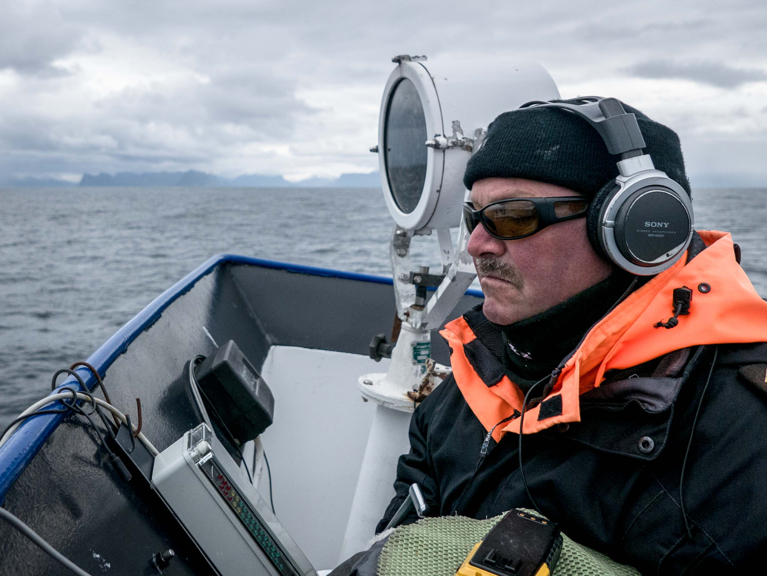 wieloryb w Norwegii