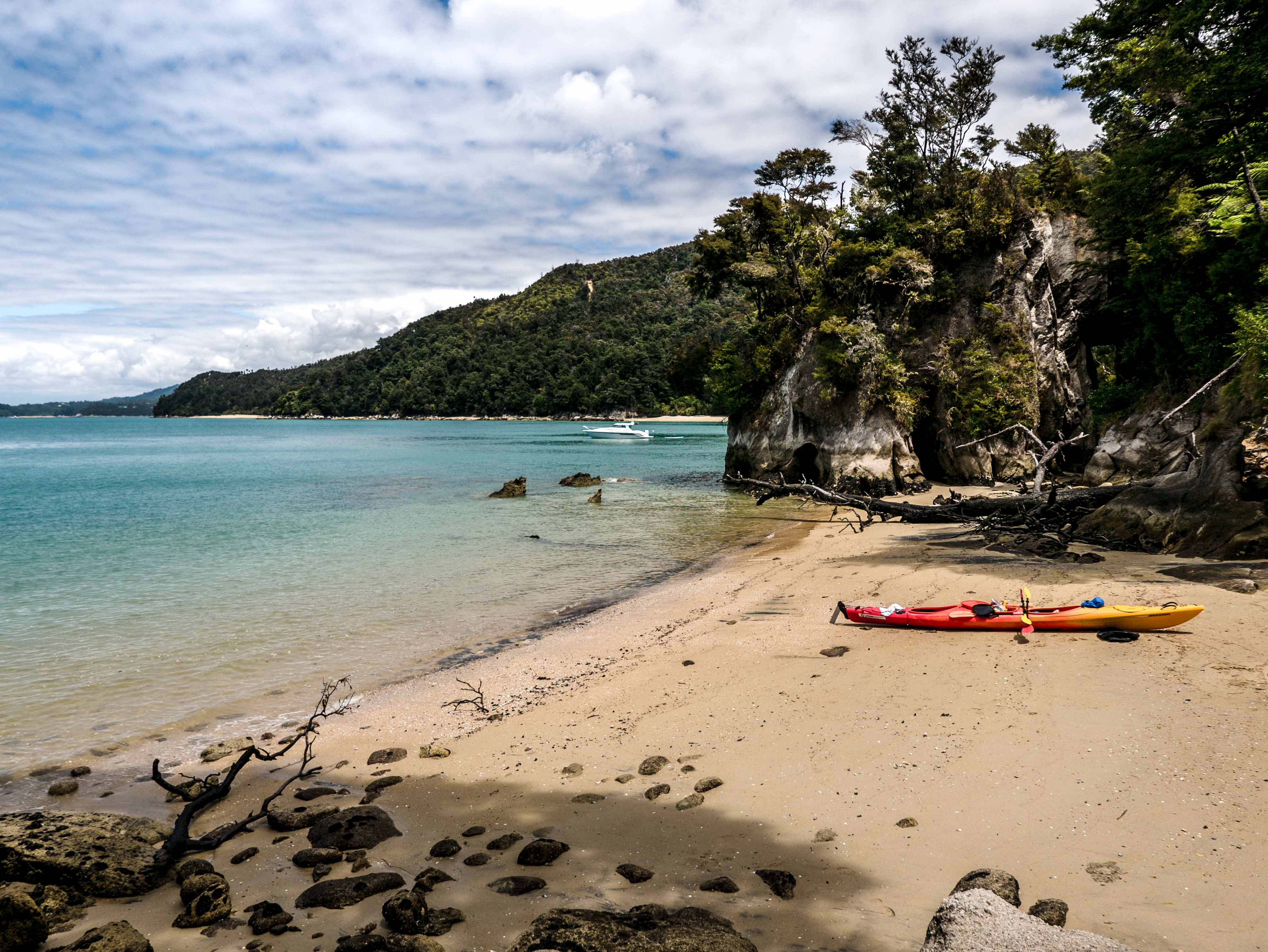 przewodnik surfera, najlepsze spoty Nowej Zelandii