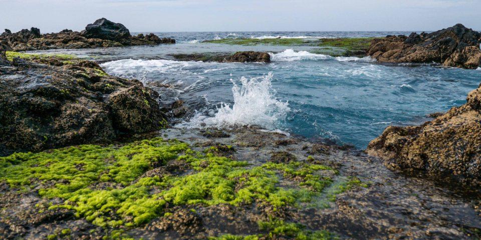 agaete, baseny w agaete, ocean, gran canaria
